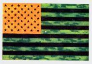 A Flag Day Optical Illusion