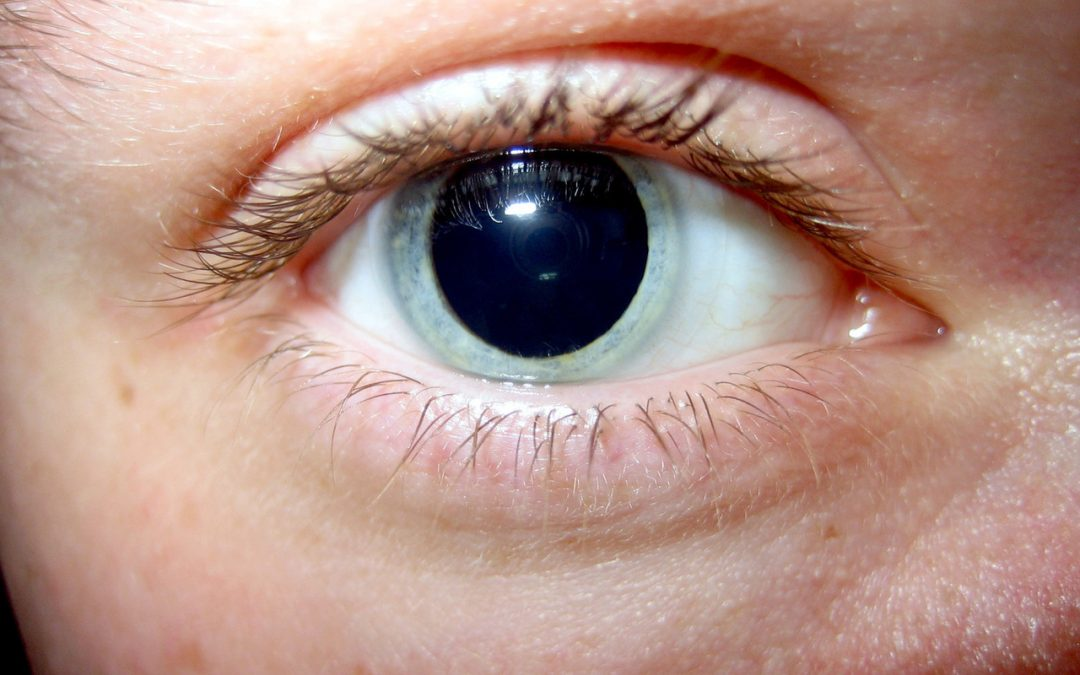 Pupil Dilation: A Crucial Part of Your Comprehensive Eye ...Dilated Pupils Drugs